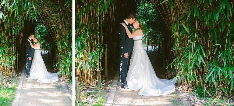 Brautpaar im Schilf im Botanischen Garten in Münster
